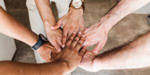 Lees meer over het artikel Samen komen we verder, samenwerken loont!